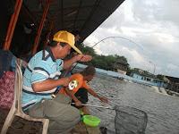 Mengenali  Situasi Pemancingan GT