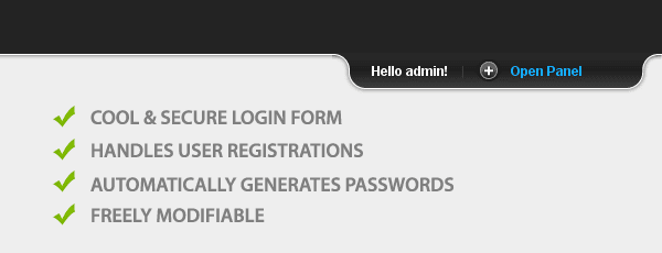 The login system