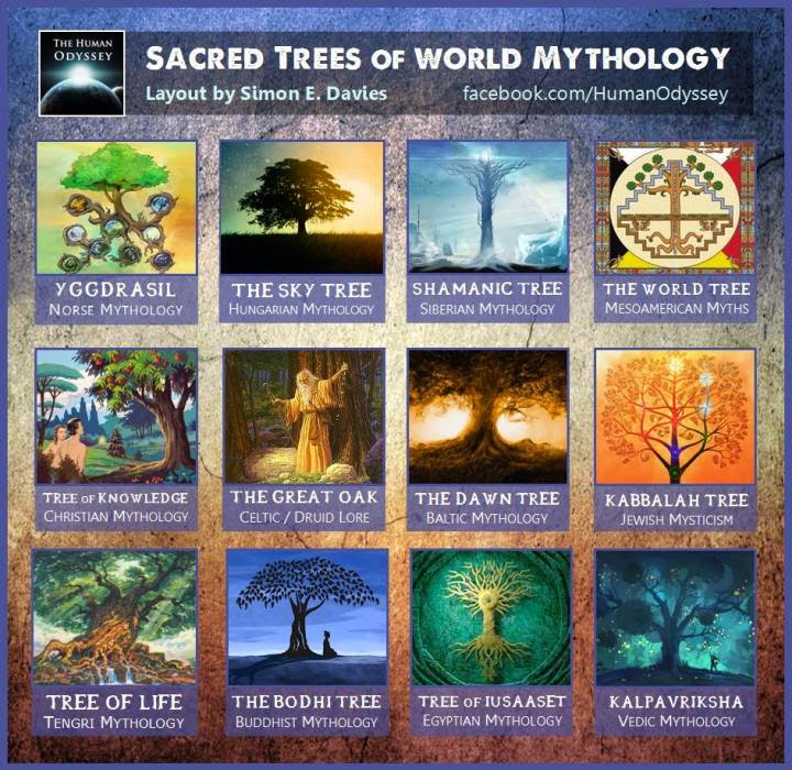 The Sacred Trees Of World Mythology