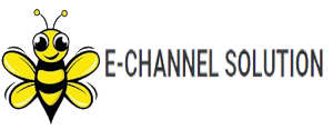 e-Channel Solution