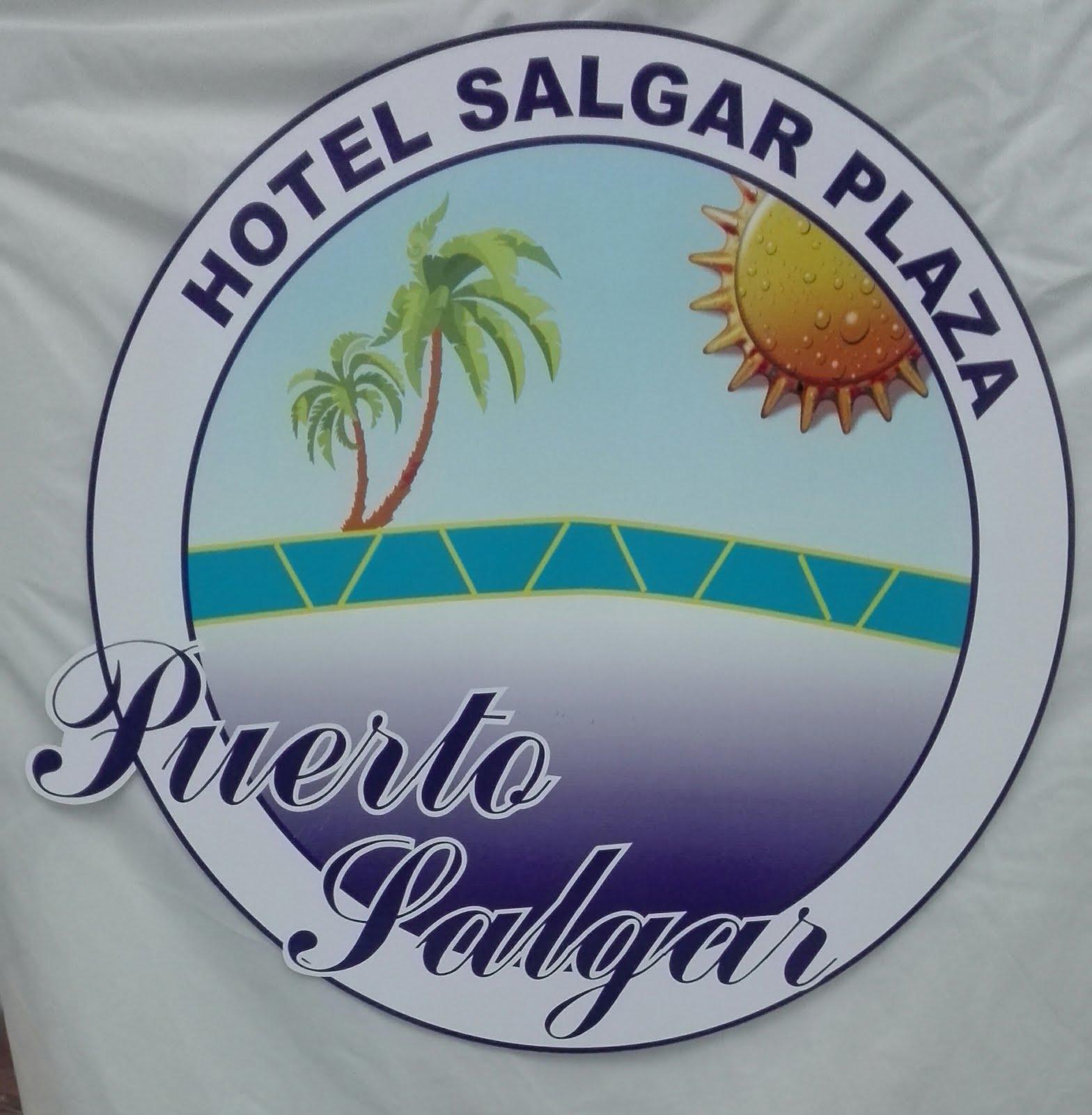 HOTEL SALGAR PLAZA
