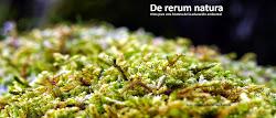 Web: De rerum natura.