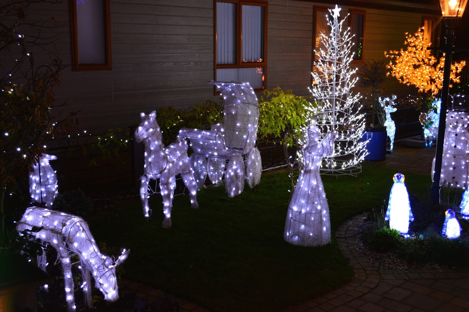 Christmas Lights, Lights At Overstone Park, Log Cabins, Festive, Christmas, Blogmas,