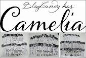 Camelia`søke-Blogg candy
