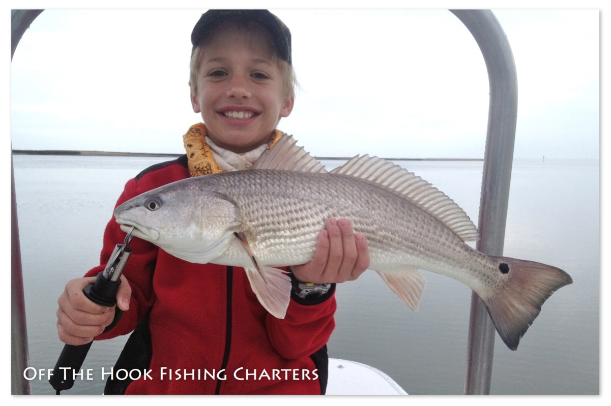 Hilton head fishing with off the hook fishing charters for Fishing charters cleveland ohio