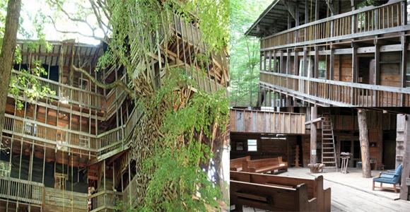 10 rumah pohon dengan desain unik di dunia