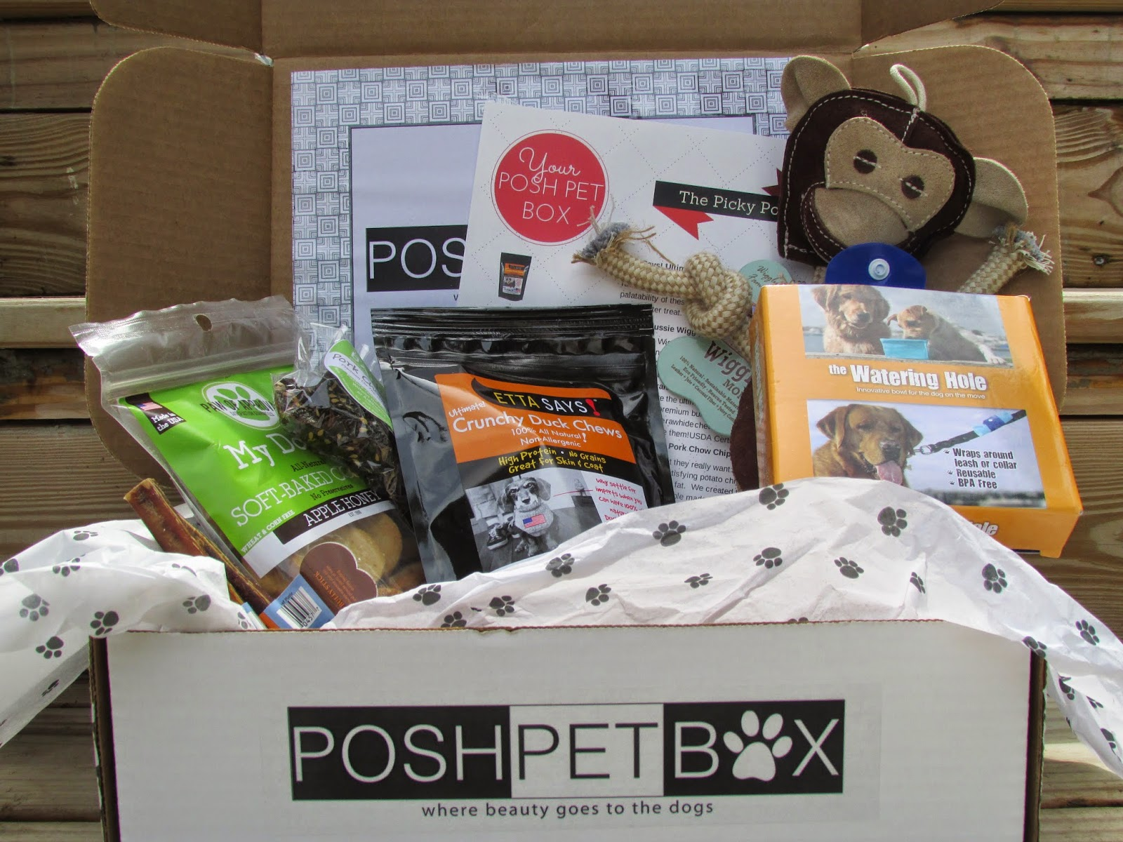 Posh Pet Box review