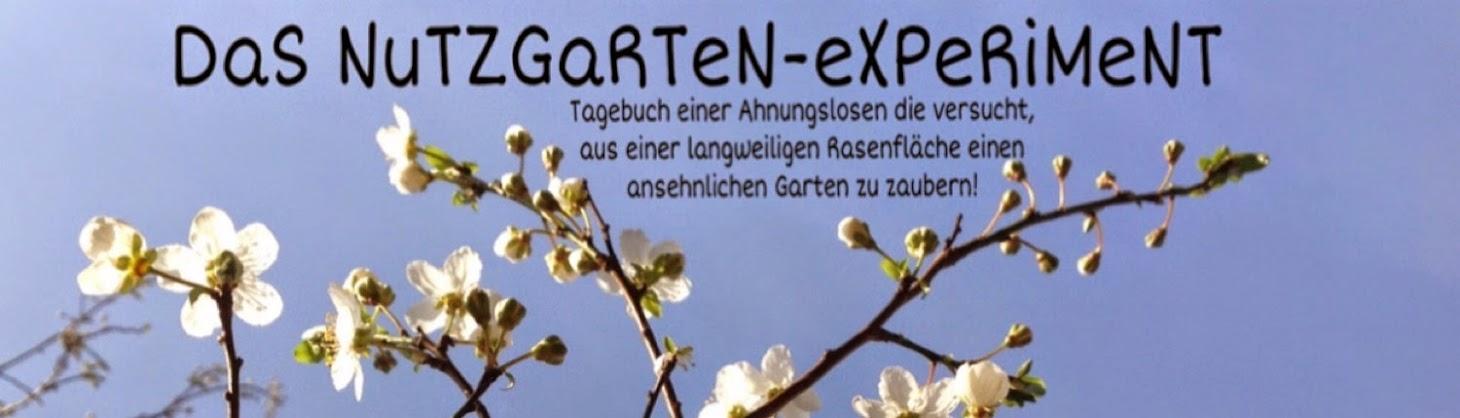 das nutzgarten-experiment: umrandung gemüsebeet, Hause und Garten