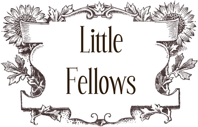Little Fellows