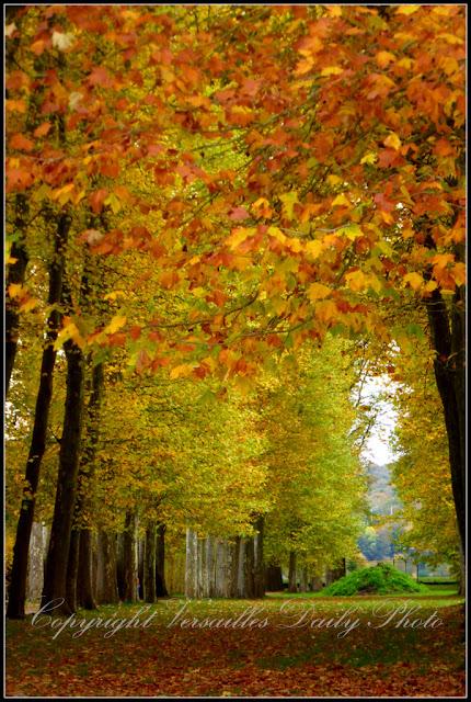 Allée d'Apollon Château de Versailles autumn