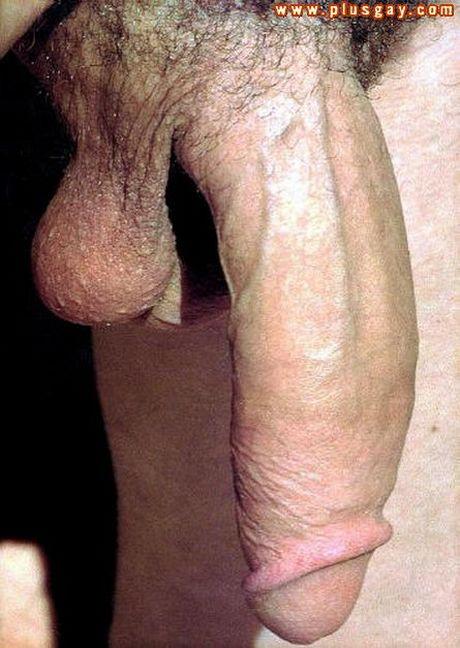Polla Monstruosa - Porno - MarPornocom