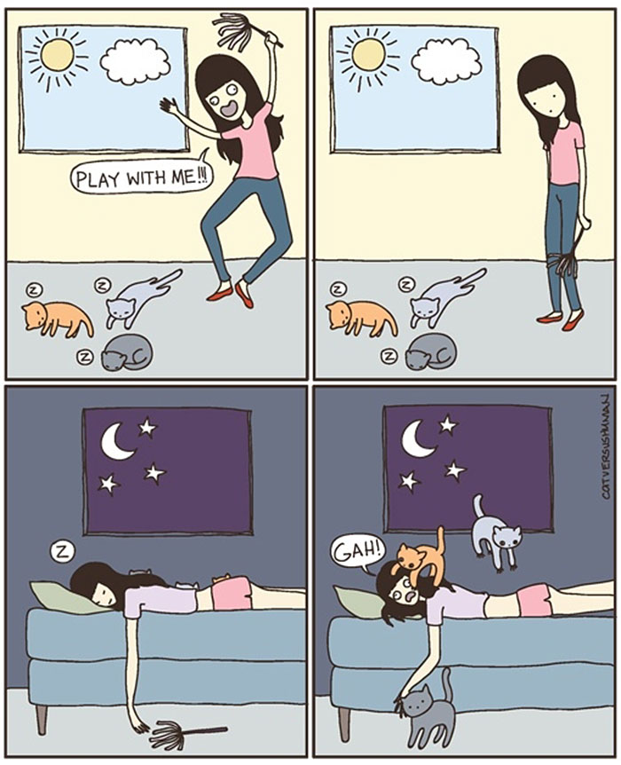 14 Funny Cartoons That Illustrate Living Alone VS Living With A Cat (Or More)