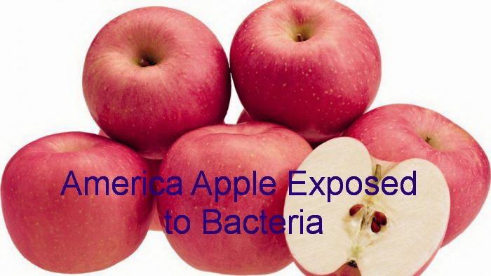 america apple