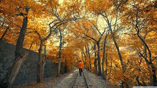 Armenia, Yerevan, Railway Park, Hayk Barseghyans  HD Wallpaper