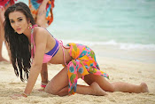 Amy Jackson Hot Photos from Yevadu-thumbnail-2