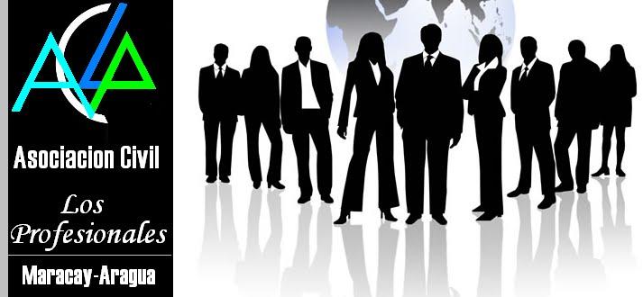 Asociacion Civil Los Profesionales