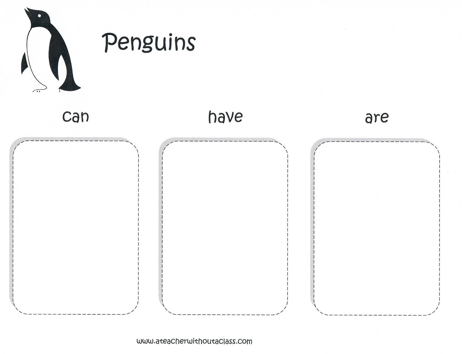 teachers first grade penguins worksheet teachers best free printable worksheets. Black Bedroom Furniture Sets. Home Design Ideas