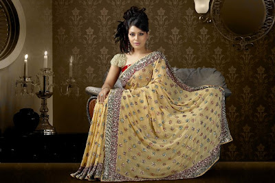 Embroidered Sarees Collection 2011, Hand Embroidered Sarees Online