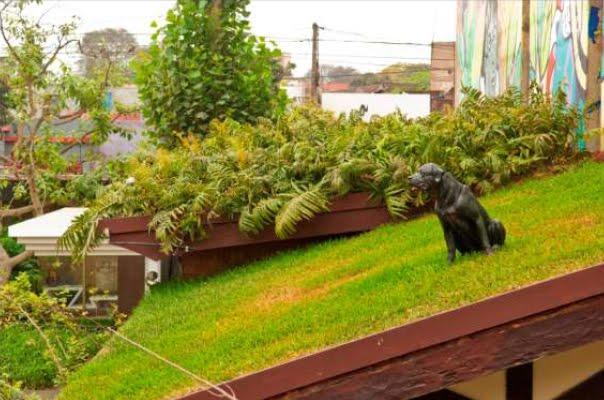 Jardines verticales y cubiertas vegetales marzo 2011 - Cubiertas vegetales para tejados ...