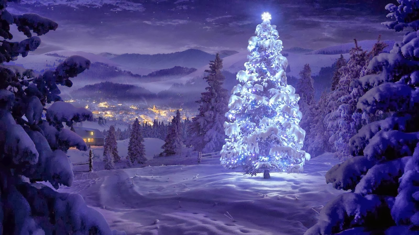 200+ Latest Concepts of Christmas Tree : Very Hight ...
