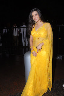 Telugu+actress+Madhurima+Yellow+Saree010 Telugu Actress Madhurima in Yellow Saree Photo Gallery