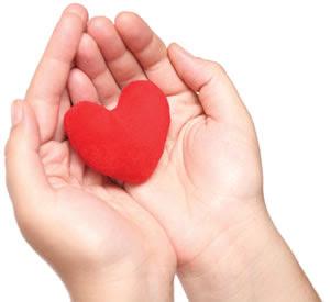 image of heart in hands