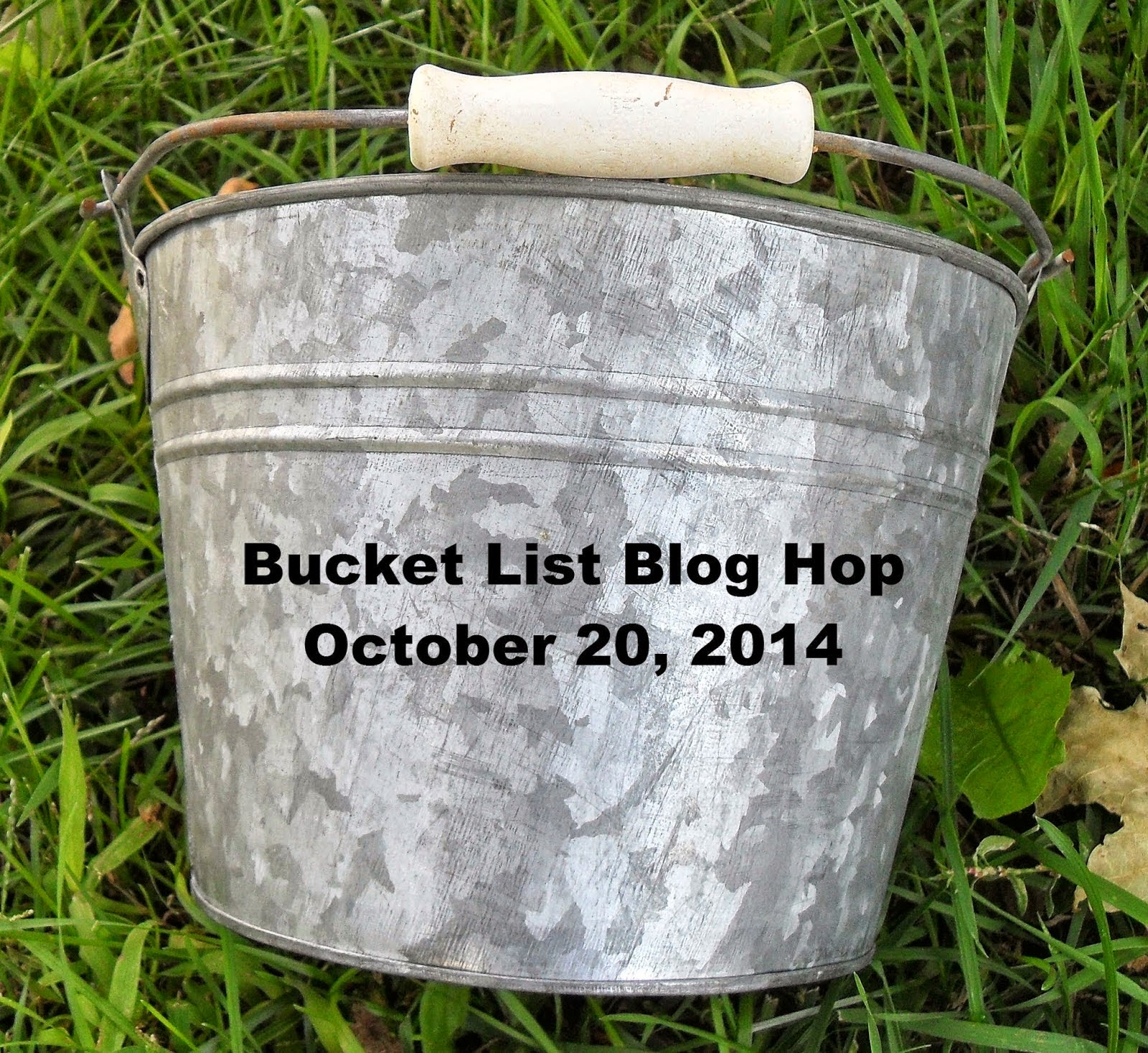 Bucket List Blog Hop!
