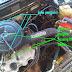 DIY : Cara Mengetahui Top Mesin atauTop Dead Center ( TDC ) pada Charade 3Cyl ( G100 - CX )