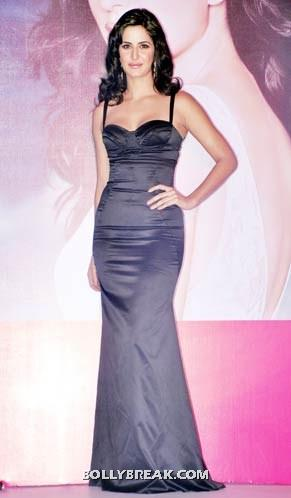 Katrina kaif Metallic gray gown - (5) -  Katrina kaif photos