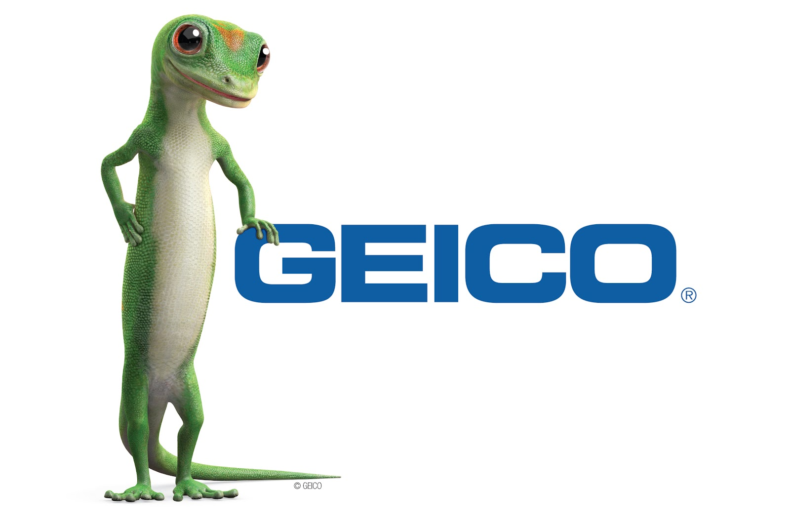 Gecko Car Insurance Quote
