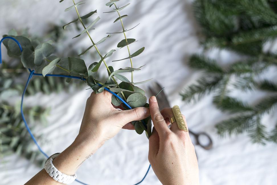 eucalipto para navidad