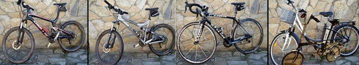 bici-salvauge