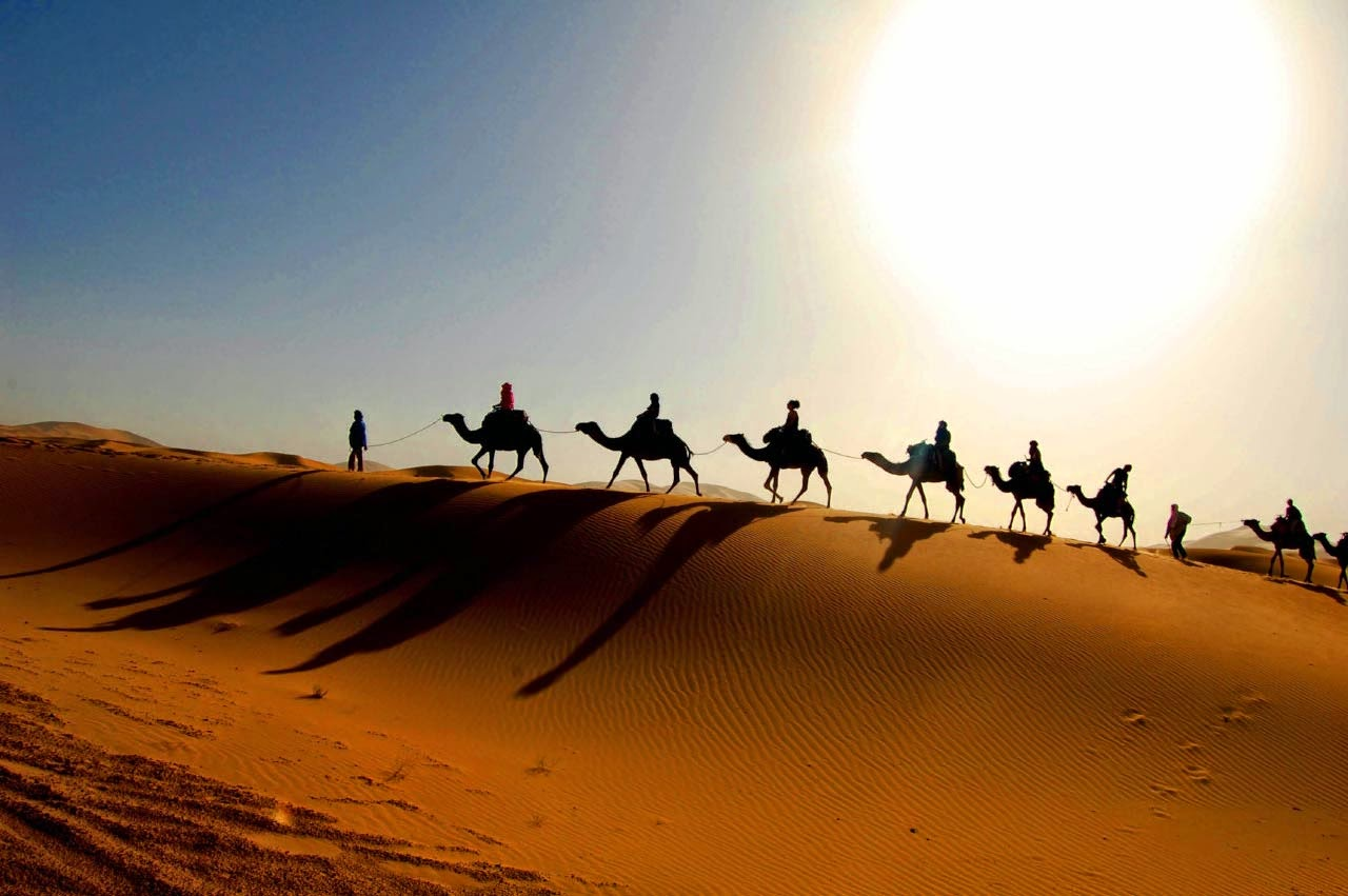The largest desert in the world 22