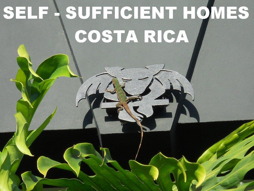 survivre au chaos l expatriation le costa rica l autonomie la bad. Black Bedroom Furniture Sets. Home Design Ideas