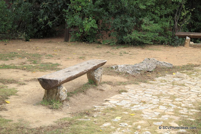 Trunk bench in empty park