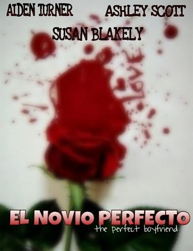 El novio perfecto (2013) online y gratis
