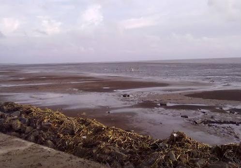 Marshy area in Dumas Beach