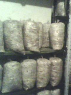 Cultivo de hongos comestibles como cultivar hongos en casa Como cultivar peces en casa