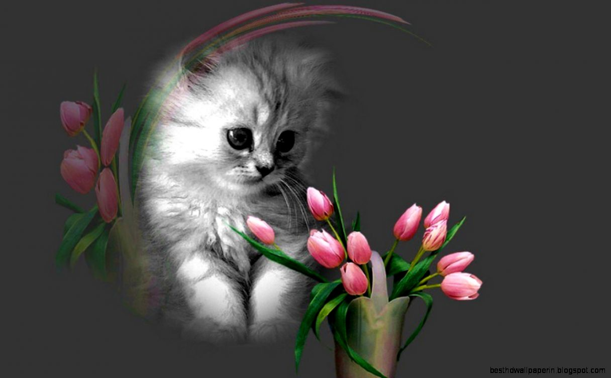 Top Wallpaper Mobile Cat - cat-cute-cat-sleeping-wallpaper-with-flowers-for-mobile-phones  You Should Have_877796.jpg