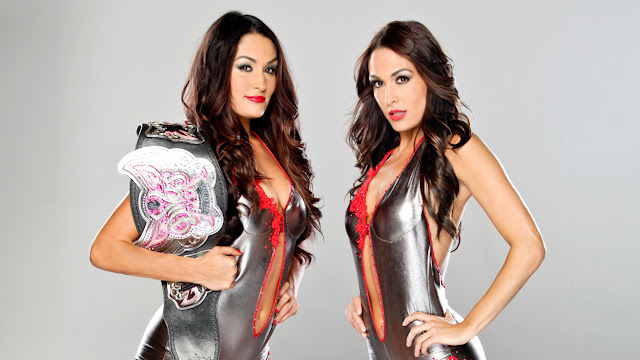 the bella twins hot-women of wwe wrestling-women of wrestling