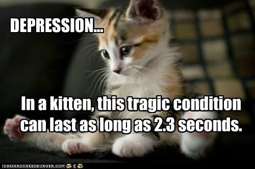 cat 6 speed