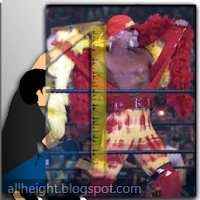 What is the height of Hulk Hogan?
