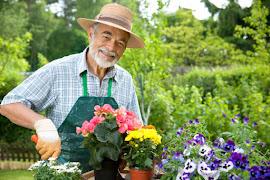 Jardinería Comunitaria