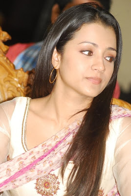 Trisha Hot Spicy in Chudithar at Function Cute Photos