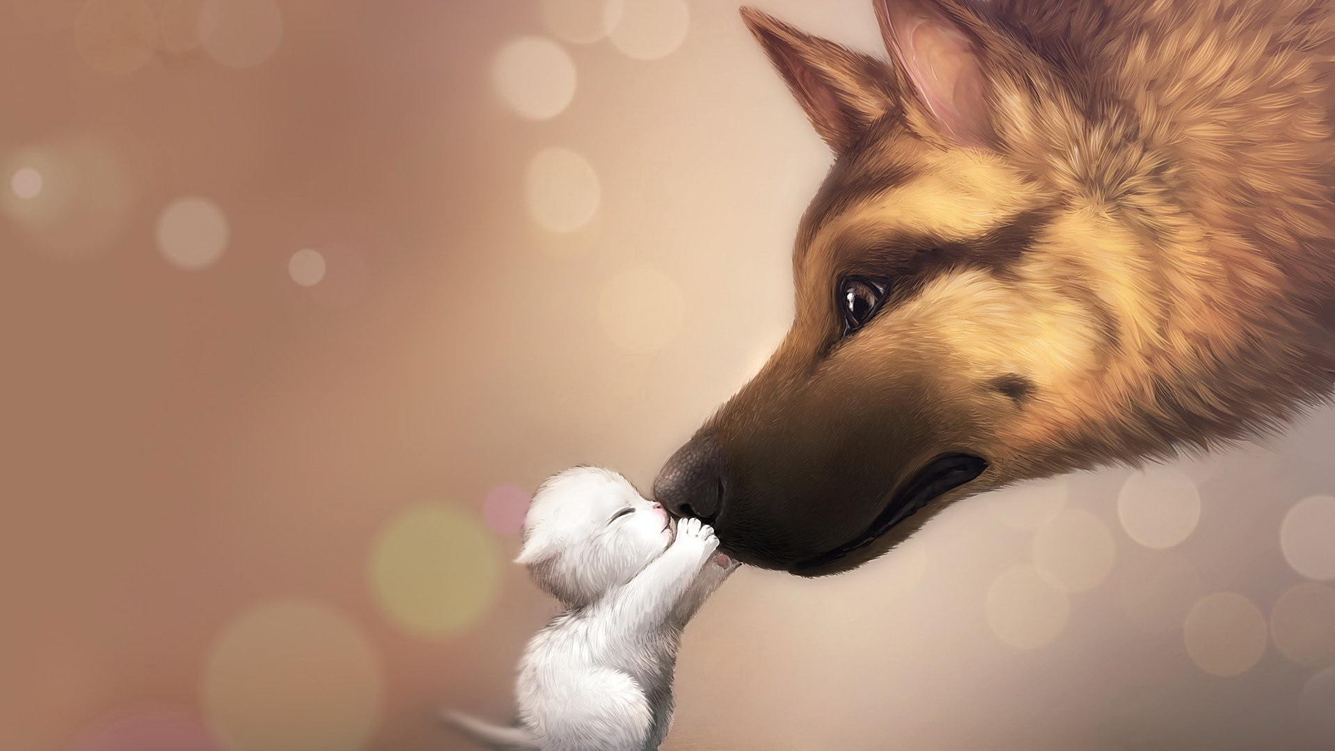 Dog and Little Cat  Full HD Desktop Wallpapers 1080p