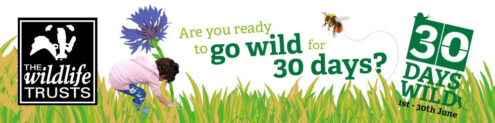 THIS JUNE WE CHALLENGE YOU TO GO WILD!