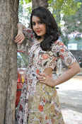 Rashi Khanna at Bengal Tiger event-thumbnail-13