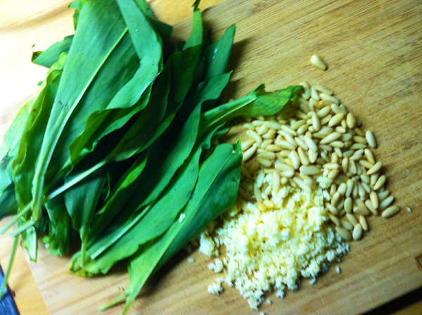 Ingredients for wild garlic pesto