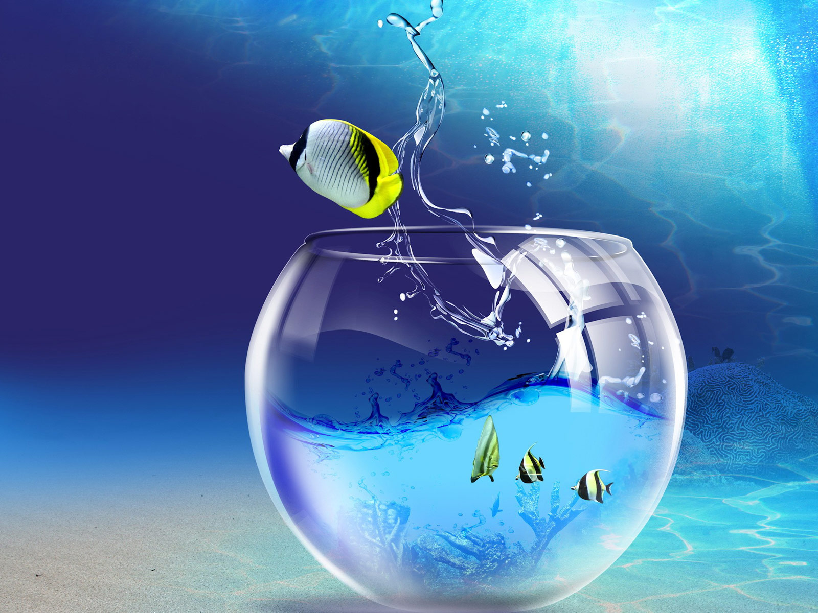 http://3.bp.blogspot.com/-Zt0h9pS9iNU/UEW7MXcmUAI/AAAAAAAAAiM/x2tCb4vkxjo/s1600/3D+Fish+Wallpaper.jpg