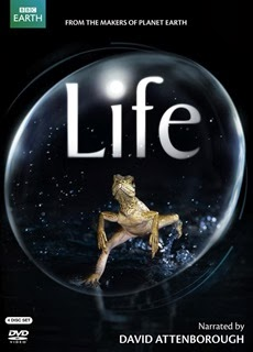 watch free online complete documentary series. Life BBC